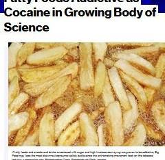 02.11.2011_SAhmed_Bloomberg