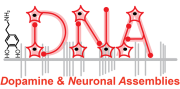 LogoDNA_sh
