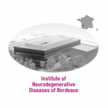 institute of neurodegenerative diseases