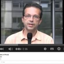 23.08.2012_FAlexandre_VideoBdxNeroscience