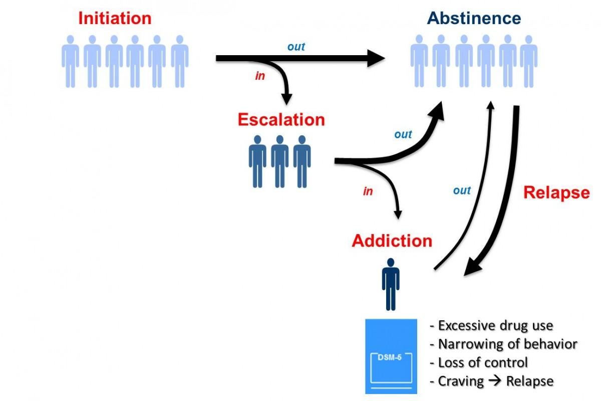 Rapid Escalation