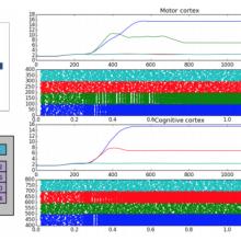 Alexandre Mémory Neuronal circuitry Behavioral loops Mnemonic synergy Modeling Autonomous robotics