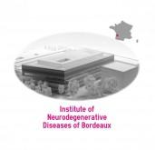 institute of neurodegenerative diseases