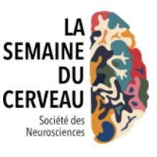 logo_semaine_cerveau